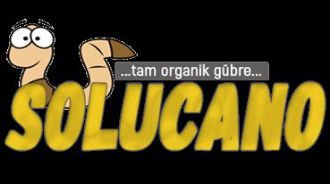 Solucano